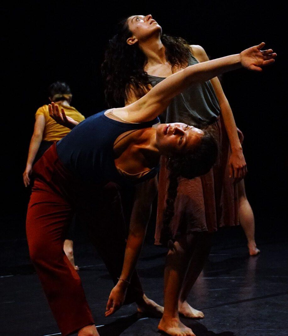 Scuola di Danza per Professionisti